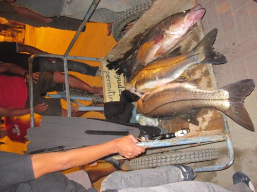 montanita ecuador deep sea fishing